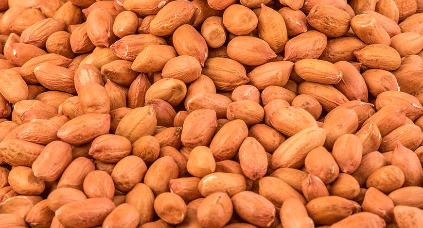 Groundnuts Ashford